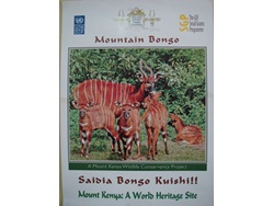 Conservation of the Endangered Mountain Bongo Antelopes in Mt. Kenya-BD-2