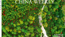 China Weekly on ICCA Cover