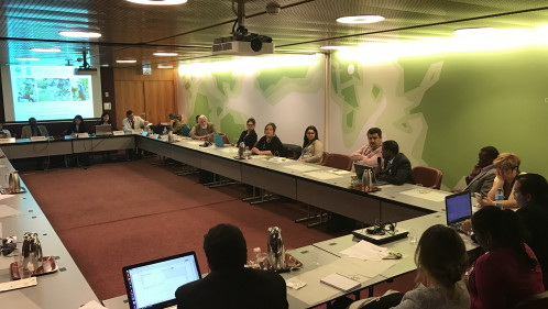 SGP spotlights community experiences in chemicals and waste management at Stockholm COP8
