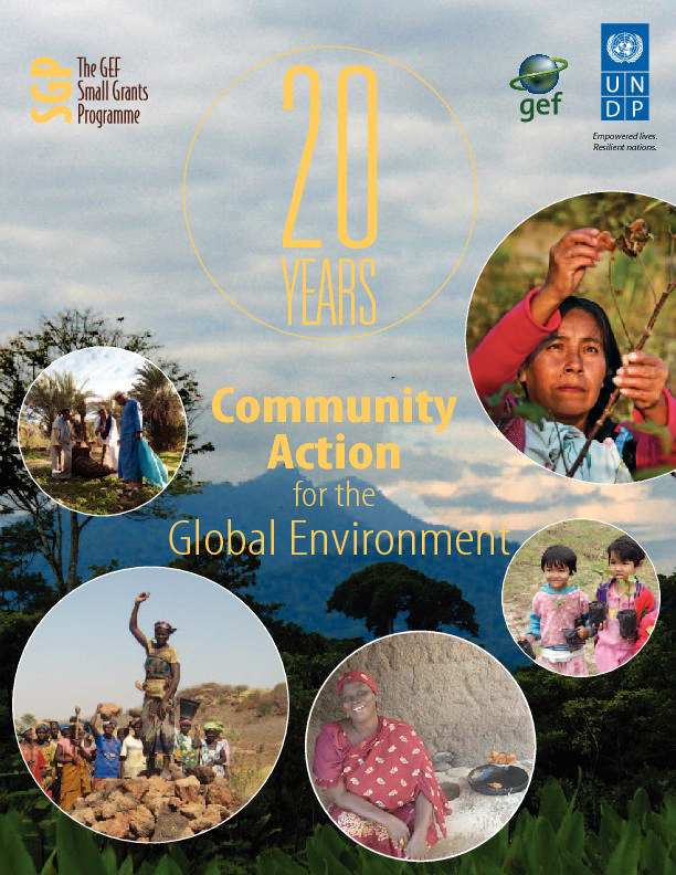 20 YEARS: COMMUNITY ACTION FOR THE GLOBAL ENVIRONMENT