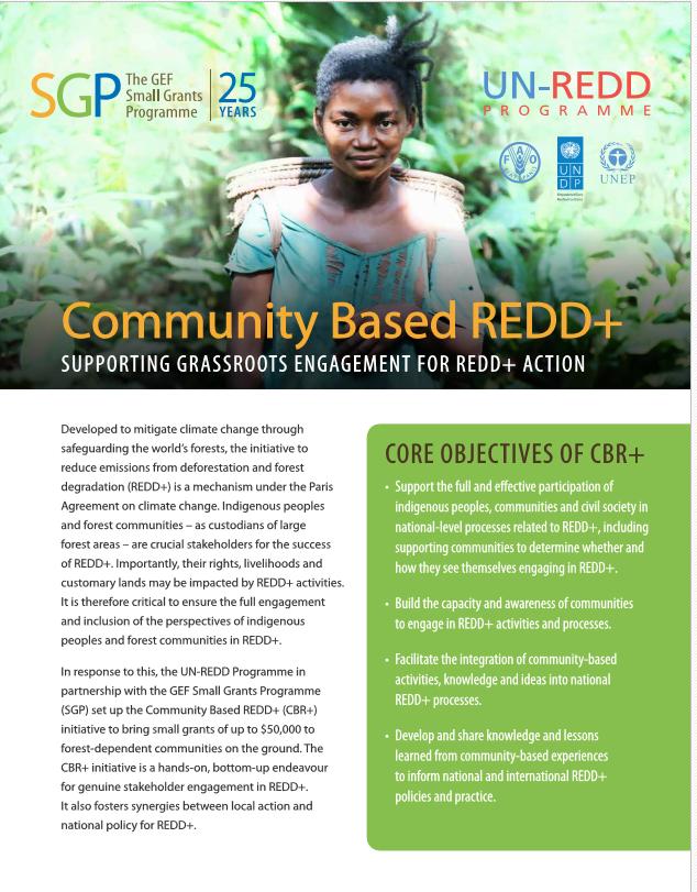 Community Based REDD+