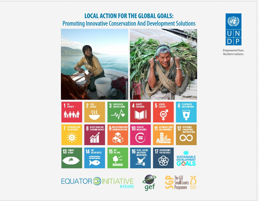 SDG_publication_photo.jpg