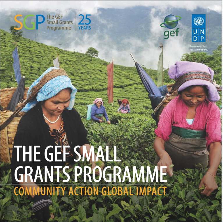 SGP corporate brochure, 2017
