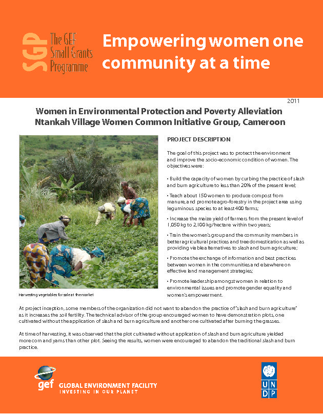 Ntankah Women in Environmental Protection and Poverty Alleviation