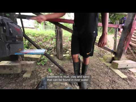 Suriname: River bank protection with mangrove reforestation
