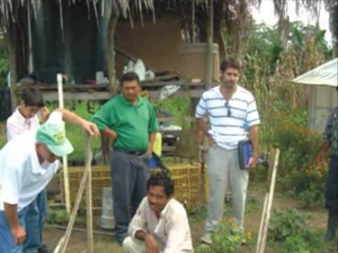 Belize - Agriculture Recovery After Floods Santa Familia