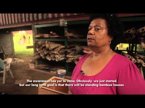 Suriname:Promotion of bamboo as alternative for wood