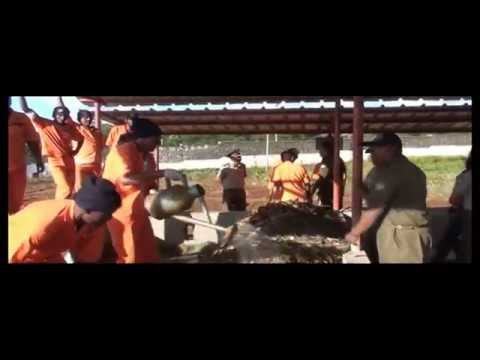Mauritius, Project:  Sustainable Waste Management Practices at Petit Verger Prison