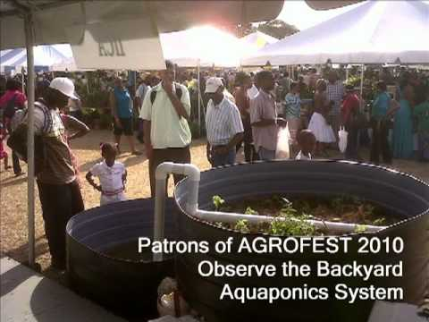 Barbados - Aquaponics and Organic Farming in Baird's Village
