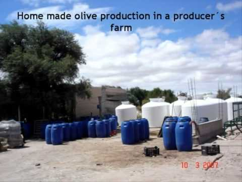 Argentina -  Decrease of Industrial Effluents Emission in the Home-made Olive Industry (English)