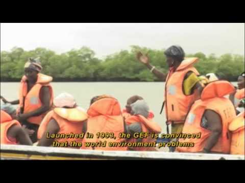 Senegal: Mangrove restoration and climate change