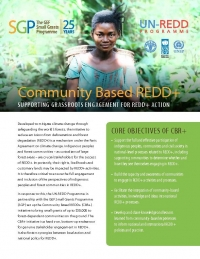 Community Based REDD+