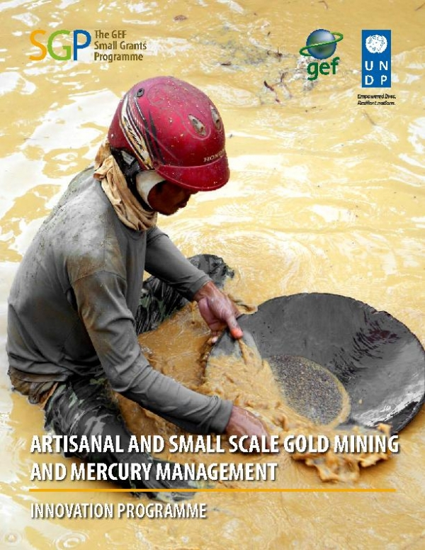 Artisanal and Small Scale Gold Mining and Mercury Management