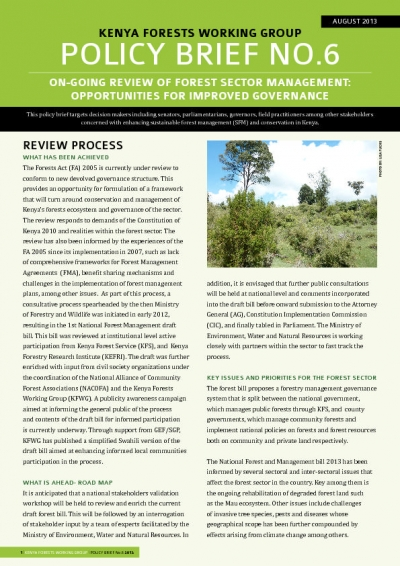 Kenya - Forest management policy brief