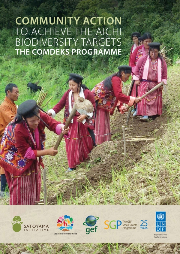 Community action to achieve the Aichi Biodiversity Targets - the COMDEKS programme