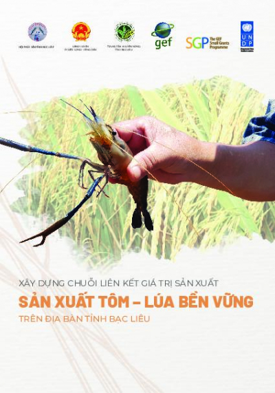 Promoting sustainable value chains in rice-shrimp production in Bae Lieu province.